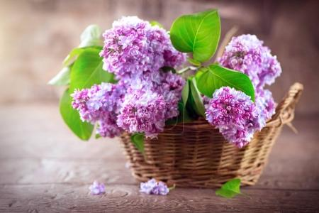 Lilac flowers bunch in basket over blurred background