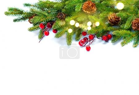 Christmas tree with cones branches isolated on white background