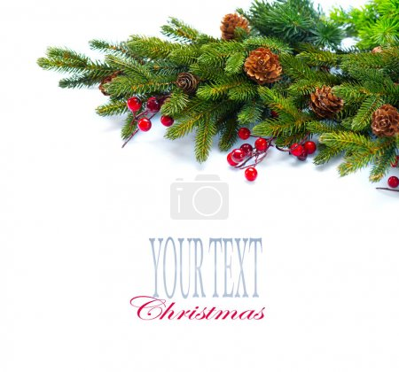 Christmas tree with cones branches isolated on white, with space for text