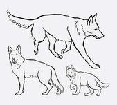 German shepherd pet dog mammal animal line art drawing
