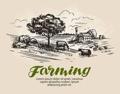 Farm sketch Rural landscape agriculture farming vector illustration