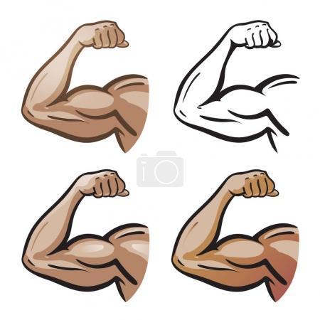 Strong male arm, hand muscles, biceps icon or symbol. Gym, health, protein logo. Cartoon vector illustration