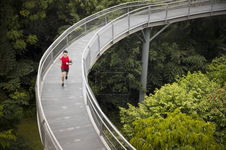 Chinese man jogging on forest Canopy walkway