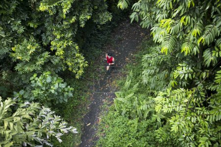 Chinese man jogging on forest trail