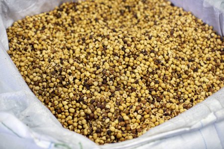 Closeup of heap of roasted hazelnuts in white sack