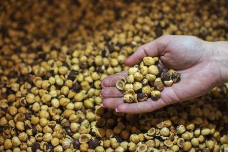 Closeup of female hand holding roasted hazelnuts