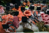 Seafood department with diverse kinds of fish in supermarket