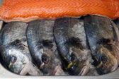 Fresh fish dorade and salmon in market