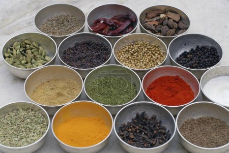 Various Indian spices, Deogarh, Rajasthan, India, Asia