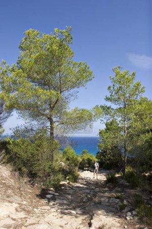 Photo pour Chemin romain Cam rom près de Es Cal de Sant Agust - Formentera - image libre de droit