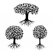Set of abstract stylized trees with roots and leaves Natural illustration