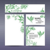 Corporate style - herbs Vector background sketch herbs Herbs - Bay leaf dill thyme sage rosemary Basil parsley arugula