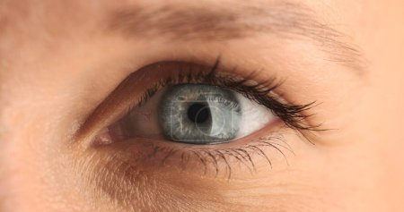 closeup of womans eye
