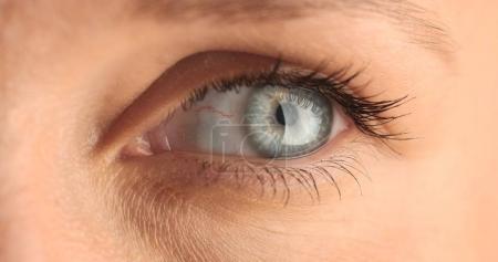 closeup of womans eye
