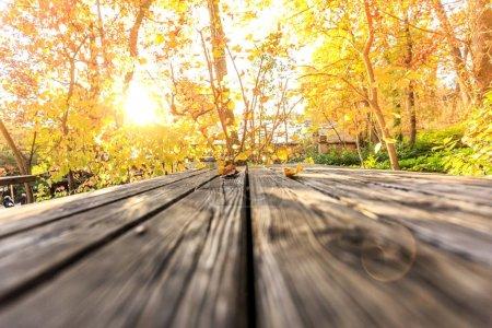 Photo pour Vue rapprochée de la table en bois avec paysage d'automne - image libre de droit
