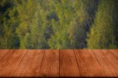 Wall of autumn trees in the forest over old light wooden table o