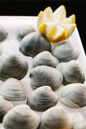 Photo for Raw unshucked clams on ice - Royalty Free Image