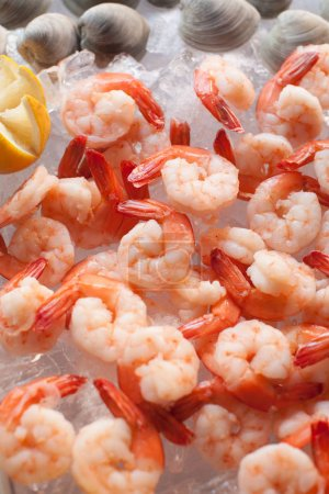 Photo for Raw bar with cooked shrimp and clams - Royalty Free Image