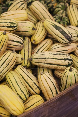 Photo for A pile of delicata squash on display at farmer's market ready for purchase - Royalty Free Image