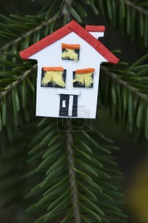 House miniature on fir tree.