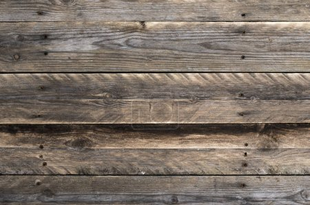 Wooden background texture. Boards
