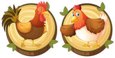 Chickens on round wooden badges illustration