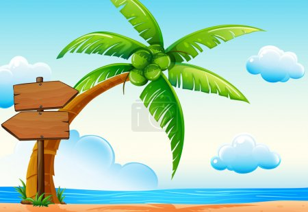 Scene with ocean and coconut tree