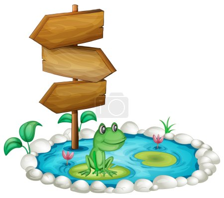 Frog and wooden sign at the pond