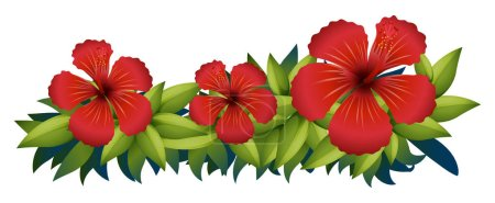 Red hibiscus in green bush