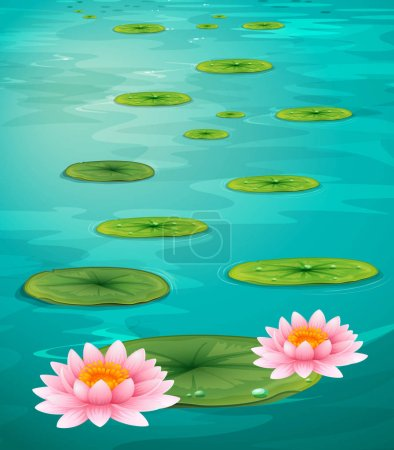 Two lotus flowers and leaves on water