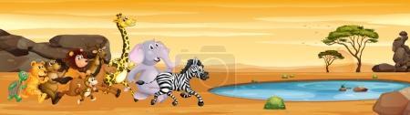 Wild animals running to the pond