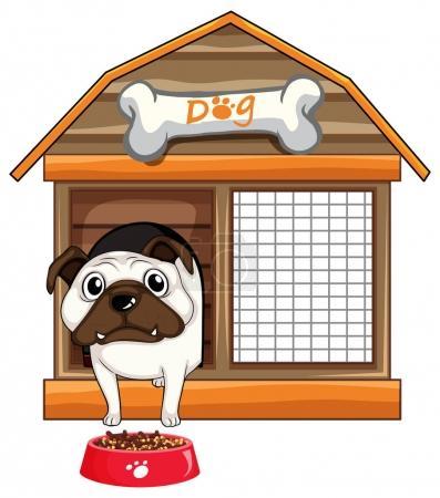 Pug dog in dog house
