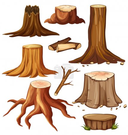 Illustration for Different stump trees on white background illustration - Royalty Free Image