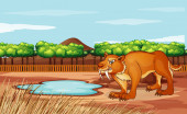 Scene with sabertooth in the park