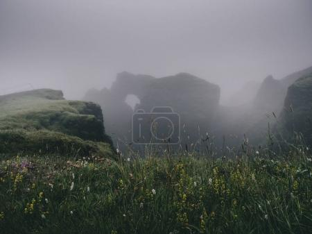 green grass on misty cliffs in Western Fjords in Iceland