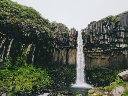 Photo for Svartifoss the black waterfall in Skaftafell national park in Iceland - Royalty Free Image