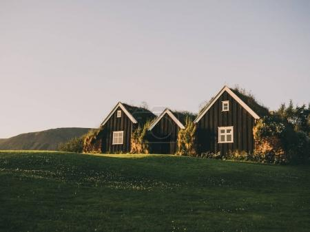 traditional icelandic houses with grass roofs on green field, Iceland