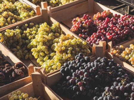 Photo pour Vue rapprochée des raisins frais sur le marché de rue - image libre de droit