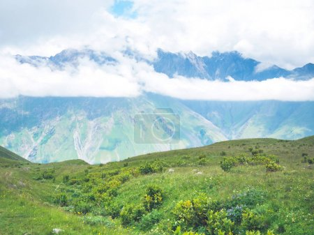 Photo for Beautiful landscape with scenic mountains and green vegetation in georgia - Royalty Free Image