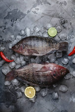 top view of fresh raw sea fish on ice cubes with slices of lime and lemon and chili peppers on grey
