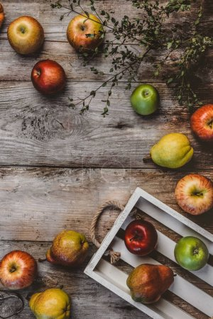 Photo for Top view of branch, wooden box, pears and apples on rustic surface - Royalty Free Image