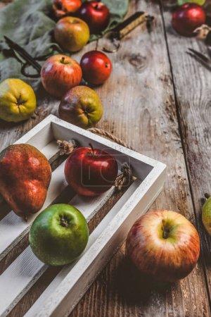 Nahaufnahme von Birnen, Äpfeln, Holzkiste, Schere, Handwaage und Küchentuch auf rustikaler Tischplatte