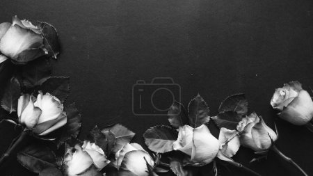 beautiful roses on black background, black and white