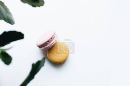 Photo for Composition of delicious macaroons on white background - Royalty Free Image