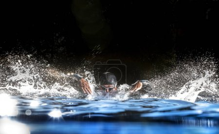 Triathlon athlete swims in pool