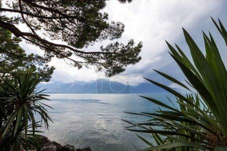 Photo pour Lac Léman à Montreux en Suisse dans les Alpes - image libre de droit