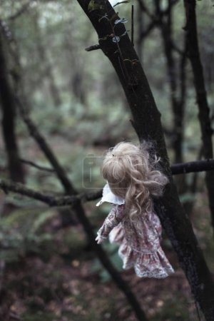 Spooky doll hanging on tree