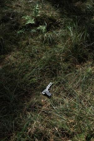 Pistol lying green grass