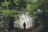 Man in mysterious green forest with fog