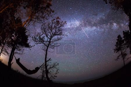 Photo for Man sleeping in nature on hammock under the trees with beautiful milky way and stars in background - Royalty Free Image